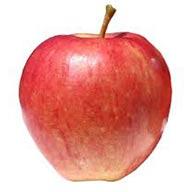 سیب قرمز  یک کیلو