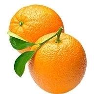 پرتقال شمال یک کیلو