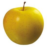 سیب زرد یک کیلو