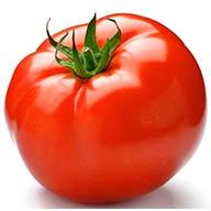 گوجه فرنگی  گلخانه یک کیلو